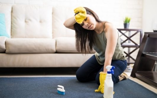 What You Need to Know Before You Hire a Carpet Cleaner